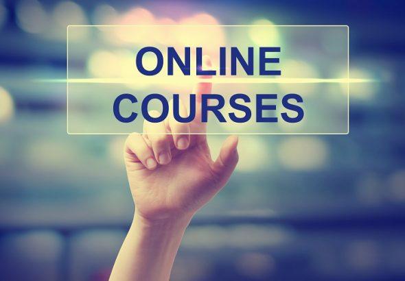 Guru Les Privat Online